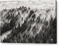 Sundance No.1 Acrylic Print