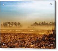 Sunday Afternoon Acrylic Print by Tom Druin