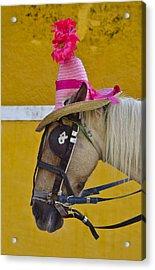 Sunday Bonnet  Acrylic Print by Skip Hunt