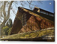 Sunday Morning Acrylic Print by Larry Darnell