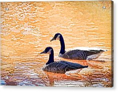 Acrylic Print featuring the photograph Sunday On The Pond by Ludwig Keck
