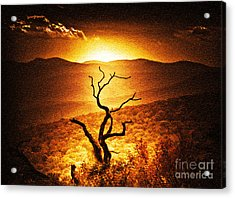 Sundown In The Mountains Acrylic Print by Lydia Holly
