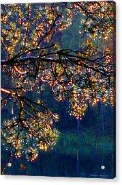 Acrylic Print featuring the photograph Sundrops by Leena Pekkalainen
