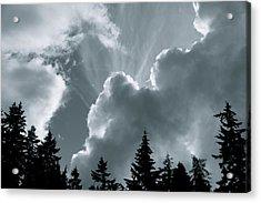 Sunflare Acrylic Print by Darren Edwards