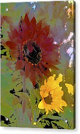 Sunflower 33 Acrylic Print