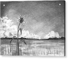 Acrylic Print featuring the drawing Sunflower Cloud by J Ferwerda