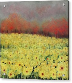 Sunflower Days Acrylic Print by Katie Black