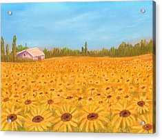 Sunflower Field Acrylic Print by Anastasiya Malakhova