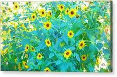 Sunflower Forest Acrylic Print