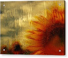 Sunflower In The Rain Acrylic Print by Jack Zulli