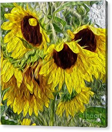 Sunflower Morn  Acrylic Print by Ecinja Art Works