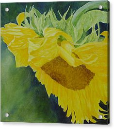 Sunflower Original Oil Painting Colorful Bright Sunflowers Art Floral Artist K. Joann Russell  Acrylic Print