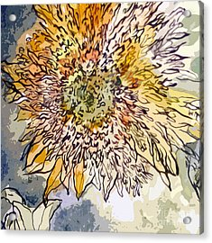 Sunflower Prickly Face Acrylic Print