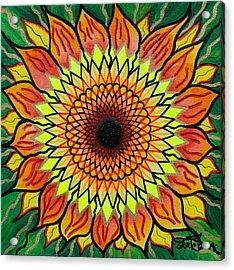 Sunflower Acrylic Print by Teal Swan