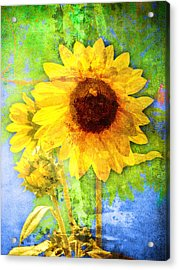 Acrylic Print featuring the photograph Sunflower With Bee Number Fourteen by Bob Coates