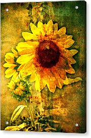 Acrylic Print featuring the photograph Sunflower With Bee Number Ten  by Bob Coates