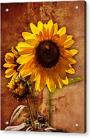 Acrylic Print featuring the photograph Sunflower With Bee Number Two  by Bob Coates