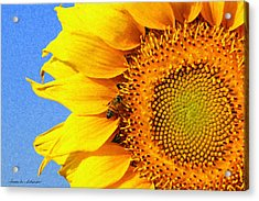 Sunflower With Bee Acrylic Print by Susan Schroeder