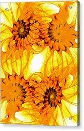 Sunflowers Acrylic Print by Anastasiya Malakhova