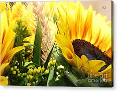 Acrylic Print featuring the photograph Sunflowers And Wheat by Julie Alison