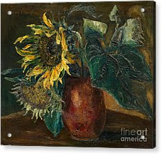 Sunflowers Acrylic Print by Celestial Images