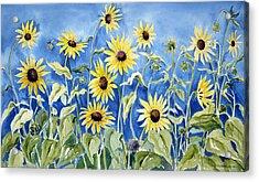 Sunflowers Acrylic Print by Joan Hartenstein