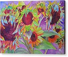 Sunflowers Acrylic Print by Joshua Morton