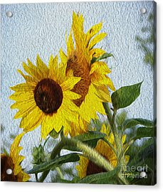 Acrylic Print featuring the photograph Sunflowers Of The East by Ecinja Art Works