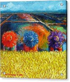 Sunflowers Acrylic Print by Paul Hilario