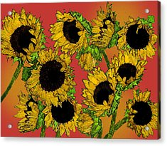 Sunflowers Acrylic Print by Robert Ashbaugh