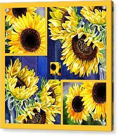 Acrylic Print featuring the painting Sunflowers Sunny Collage by Irina Sztukowski