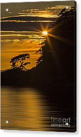 Sunkissed Acrylic Print by Sonya Lang