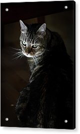 Sunlight Hits Only The Face Of A Male Acrylic Print