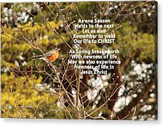 Acrylic Print featuring the photograph Sunlight On Robin With Poetry by Lorna Rogers Photography