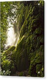 Gorman Falls Ray Of Light Acrylic Print