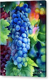 Sunlit Grapes Acrylic Print by Hailey E Herrera