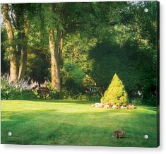 Acrylic Print featuring the photograph Sunlit Greens by Joe Winkler