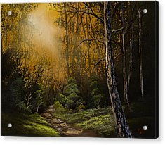 Sunlit Trail Acrylic Print by C Steele