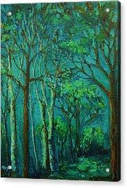 Sunlit Woodland Path Acrylic Print