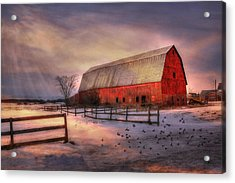 Sunny Afternoon Acrylic Print by David Simons