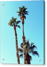 Sunny Afternoon Acrylic Print by Dietmar Scherf