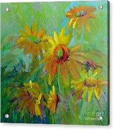 Sunny Daisies Acrylic Print by Virginia Dauth