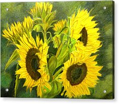 Acrylic Print featuring the drawing Sunny Days by Lori Ippolito