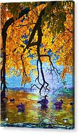 Sunny Acrylic Print by Kat Besthorn