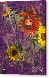 Sunny Pumpkin Acrylic Print by Audra D Lemke
