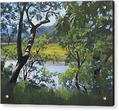 Sunny River Acrylic Print