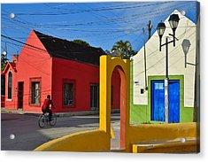 Sunny Side Acrylic Print by Skip Hunt