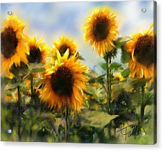 Sunny-side Up Acrylic Print by Colleen Taylor