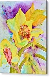 Sunny Splash Of Orchids Acrylic Print