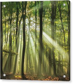 Sunny Start To The Day ........ Acrylic Print